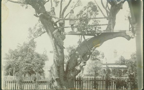 Children in Tree House at Crawford House, 37 Victoria Ave, Claremont (1914)